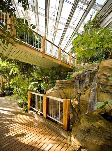 美国匹兹堡phipps温室和植物园(图)