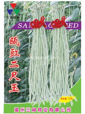 瓯豇二尺玉—豇豆种子