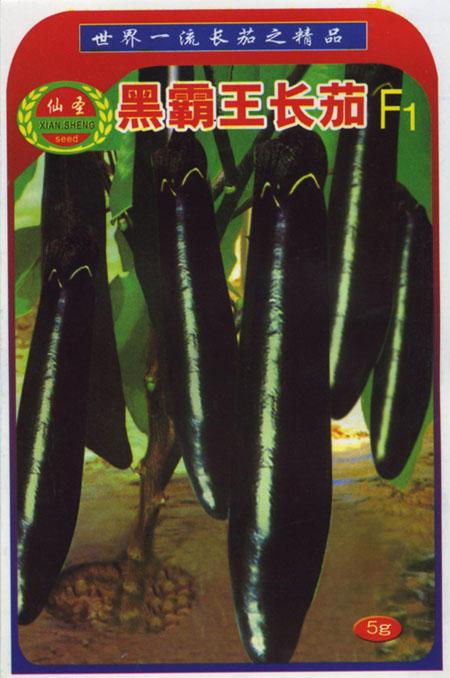 黑霸王长茄茄子种子