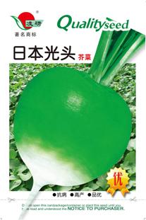日本芥菜_