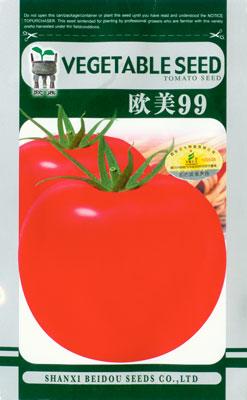 歐美99——番茄種子
