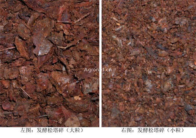 供应树皮及碎松皮 – 产品展示 - 大连九成物产有限