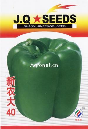 南真菜果bt种子