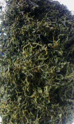 供应云南青山绿水茶